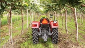 Mahindra 245 Di Orchard Price and features